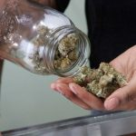 Peep: Canadians cite systemic barriers to lawful clinical cannabis