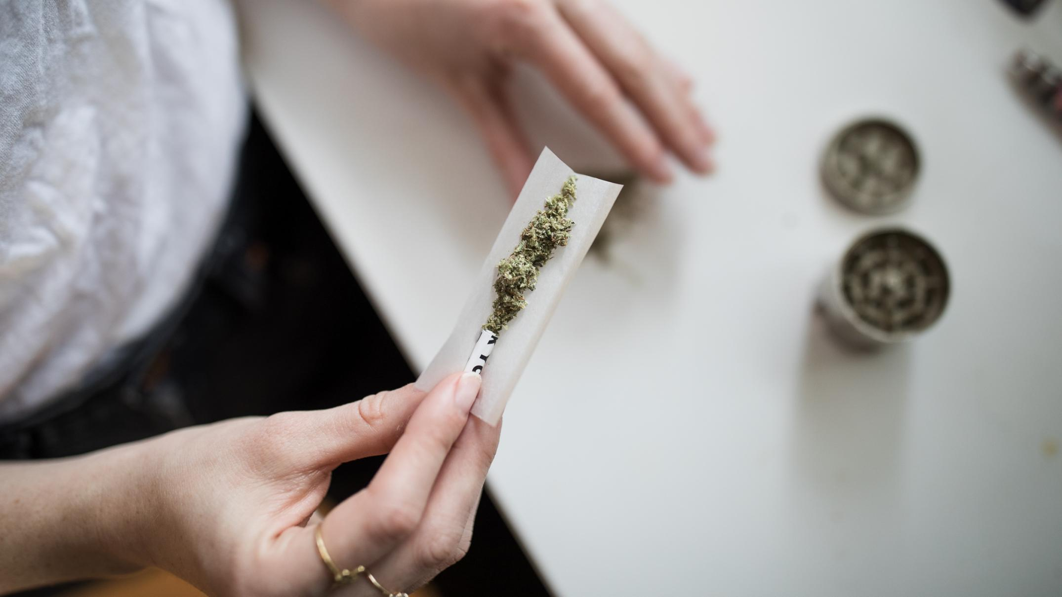NZ is the main nation to vote on the legalisation of cannabis. Here is what cease it can contain