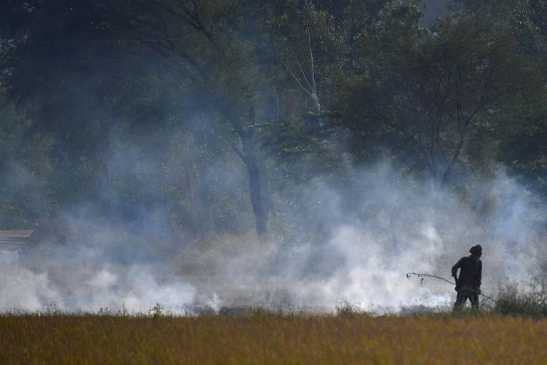Indian farmers step up illegal fires as Delhi air disaster worsens