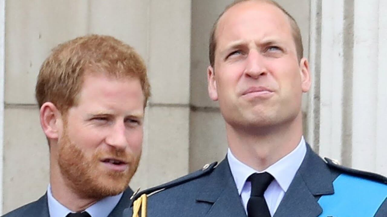 Prince William Calls Out Prince Harry on His Nonsense – And I'm Comfy!