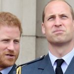 Prince William Calls Out Prince Harry on His Nonsense – And I'm Cheerful!