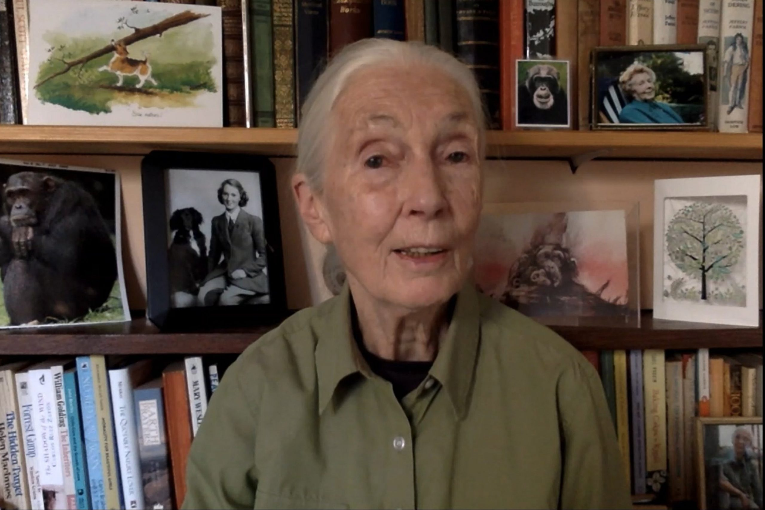 Finish the Unlawful Wildlife Trade: Dr Jane Goodall on why natural world trafficking have to live