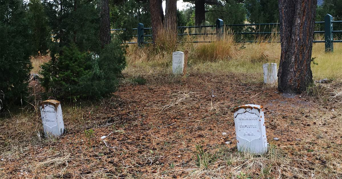 Forrest Fenn fancy hunter admits to digging in Yellowstone cemetery