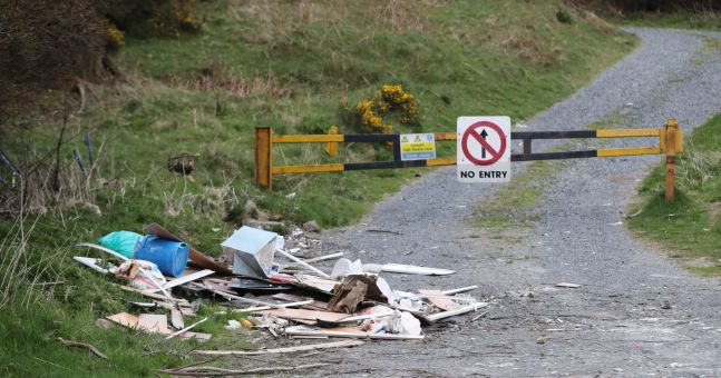 Illegal dumping: Drivers have to rep autos seized if caught, Naughten says
