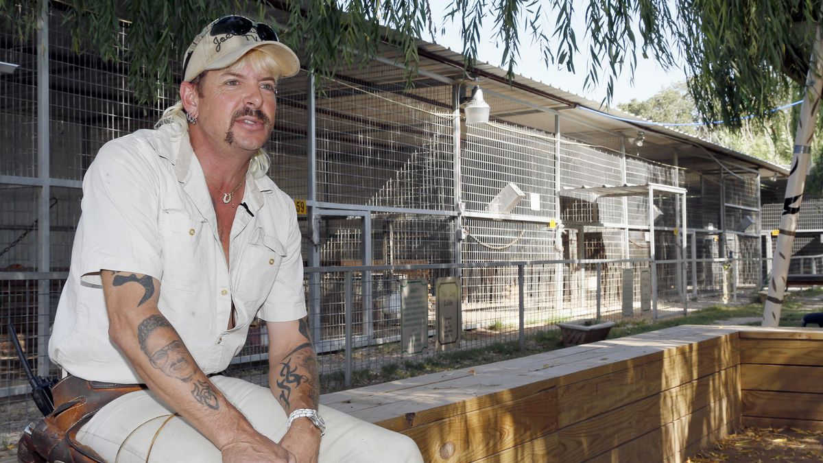 'Tiger King' Principal particular person Joe Exotic's Well suited Team So Confident In Trump Pardon There's A Limo Booked To Expend Him Up From Jail