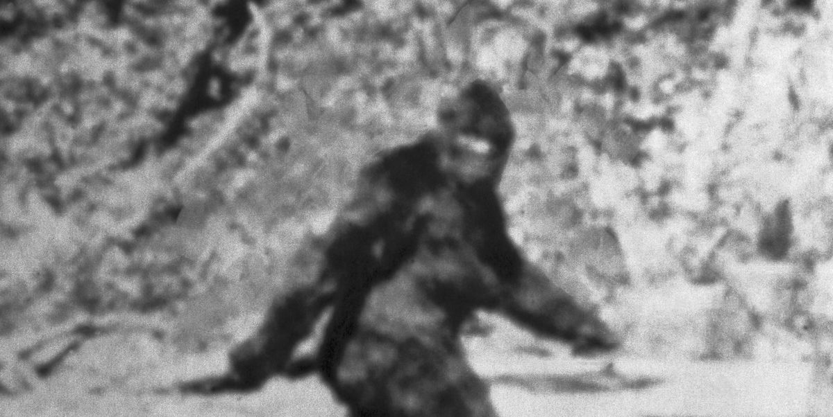 Major Original Legislation Requires Bigfoot Wanting Season