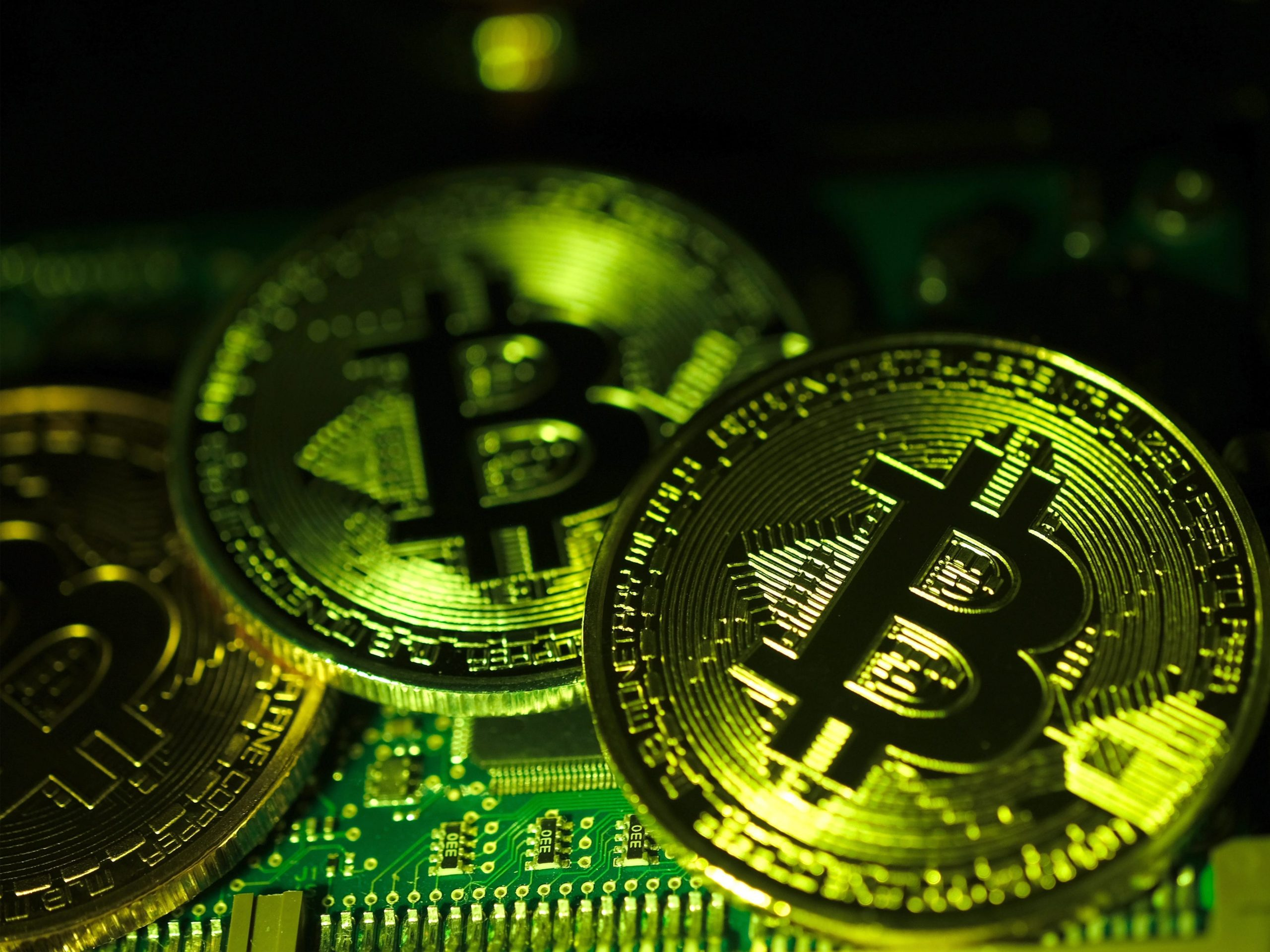 Bitcoin whales: what are they – and the plan in which are they affecting the cryptocurrency's mark?