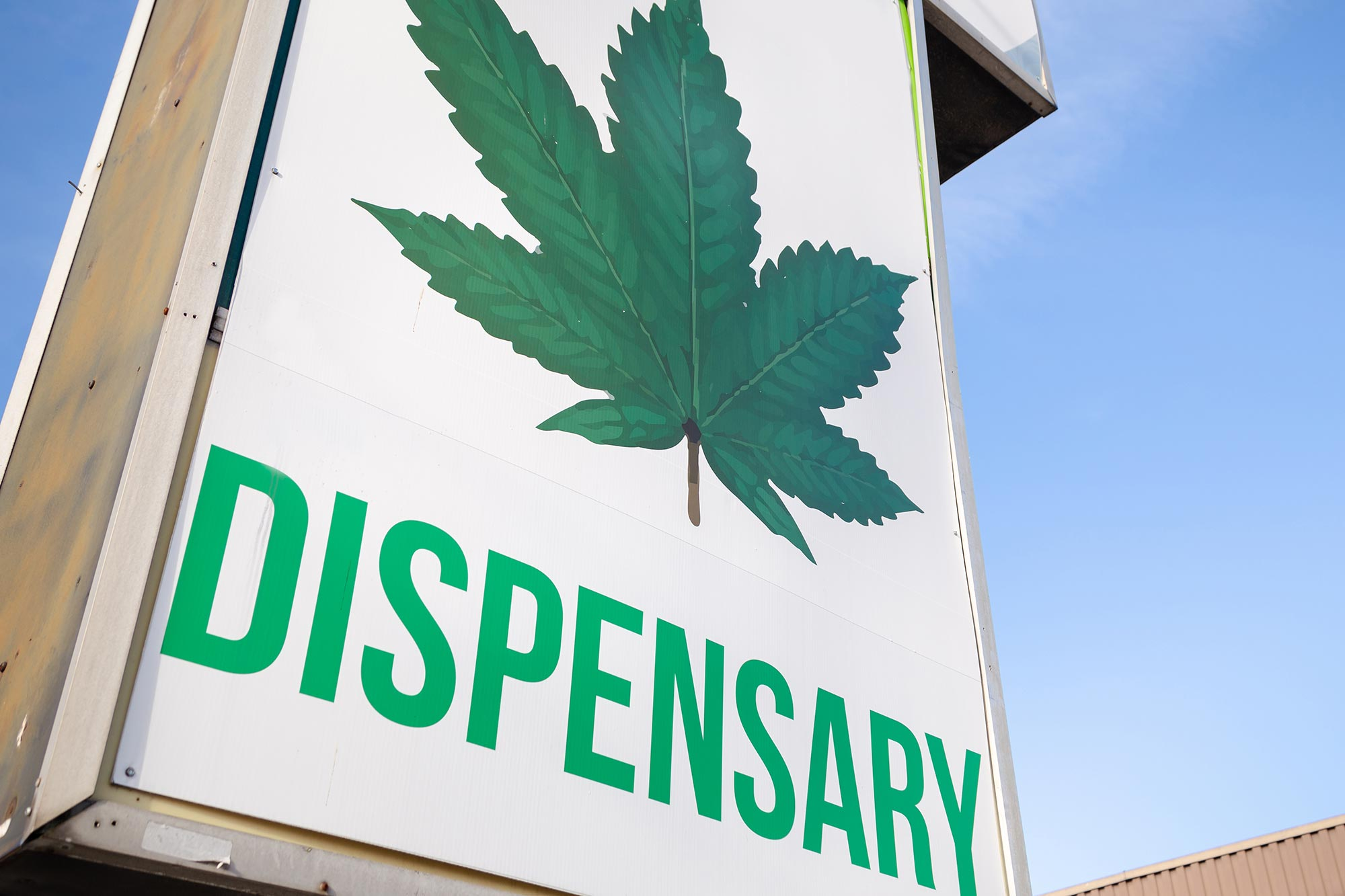 Bag admission to to Lawful Cannabis Shops Linked to Reduction in Opioid Deaths