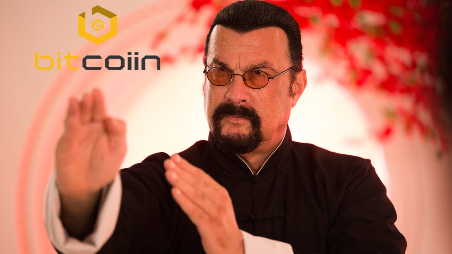 Steven Seagal, a Missing Internal most Ogle, and an Alleged Crypto Fraud