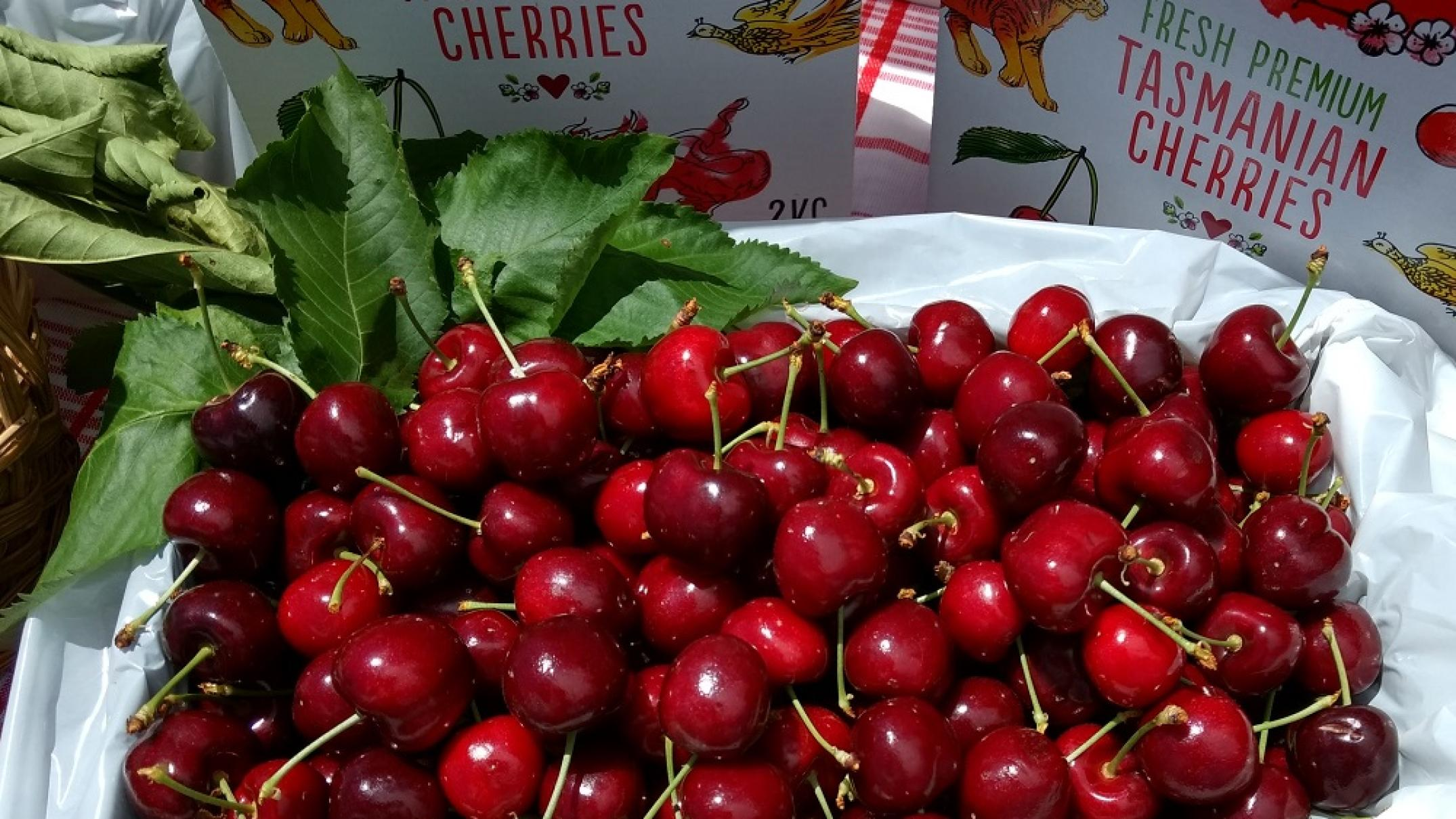 'They're making a form of cash': Tassie grower welcomes Hong Kong seizure of falsely branded cherries