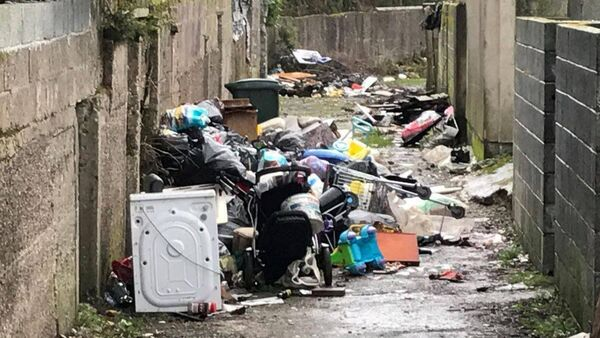 Waterford Council removes 3.5 tonnes of unlawful ruin in single day from dumping blackspot