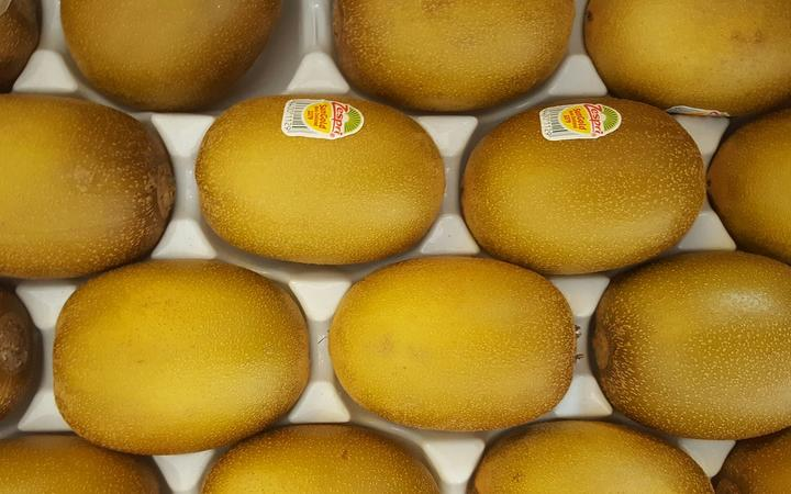 Zespri asking growers about next switch in opposition to unlawful Chinese language kiwifruit planting