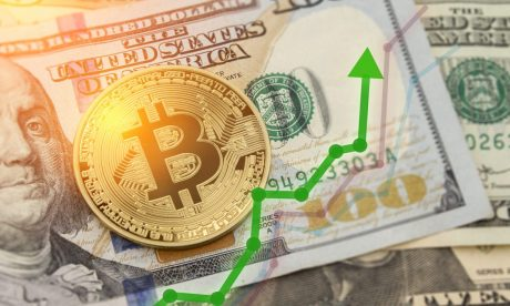Bitcoin To Surpass $120,000 In A One year, Says Pantera CEO
